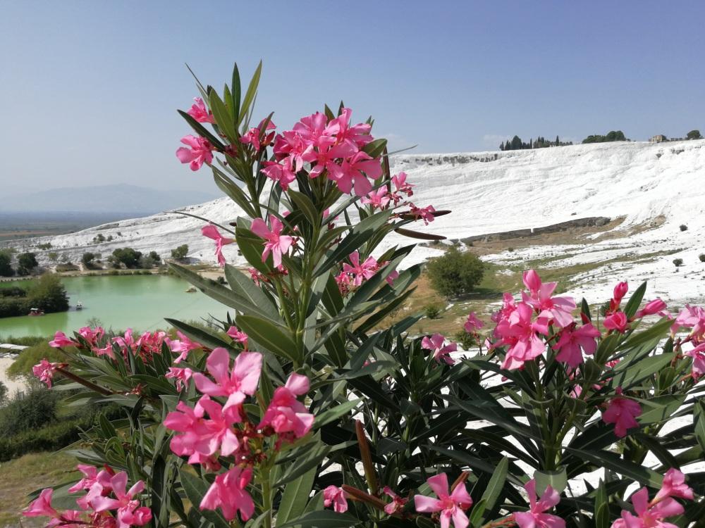 Хиераполис и Памуккале